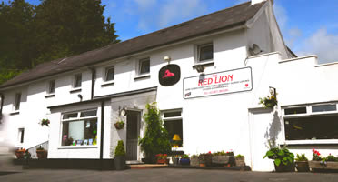 The Red Lion Llandyfaelog